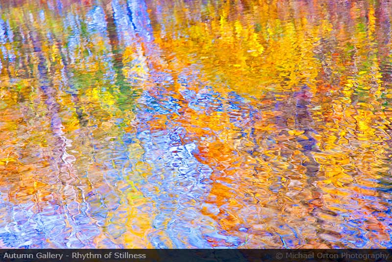 Autumn Gallery - Rhythm of Stillness
