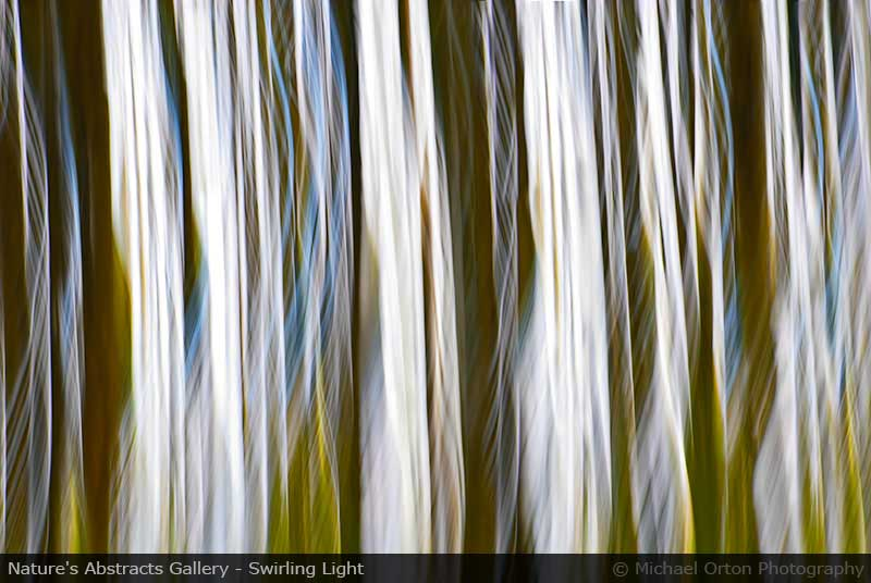 Nature's Abstracts Gallery - Swirling Light